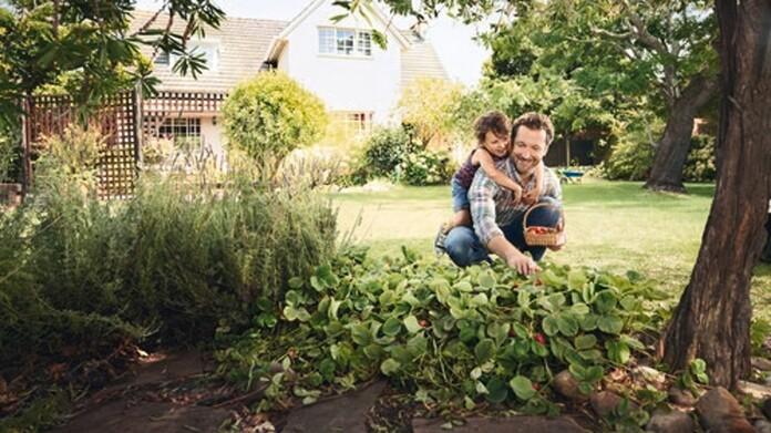 Vater und Sohn im grünen Garten unter einem Baum im Hintergrund ein Haus