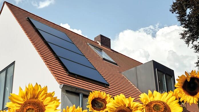 Dach mit Solarpaneel und Sonnenblumen im Vordergrund